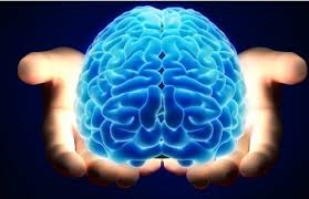 brain in hands