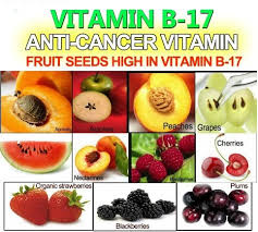Where You Can Find Vitamin B17